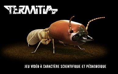 termitia