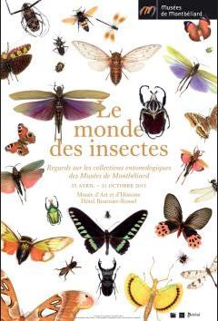 le mondes des insectes
